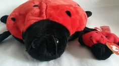 726fc4948ca Explore Collections on eBay. Beanie BabiesTy ...