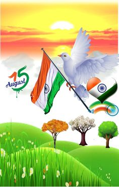 Independence Day Images Hd, Happy Independence Day Wishes, 15 August Independence Day, Independence Day Background, Indian Independence Day, Indian Flag Wallpaper, Indian Army Wallpapers, Photo Background Images, Background For Photography