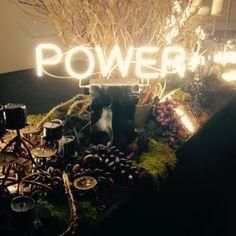 Выставка Flower Power в галерее на Солянке