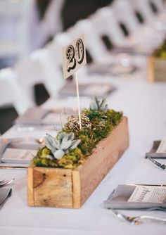 Recycled wine/port boxes make great table centres for long tables