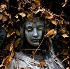 Sculpture bust covered by fallen branches
