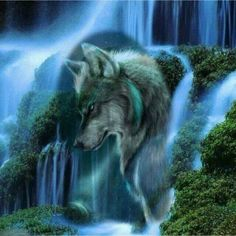 """Quality Full Square Diamond DIY Diamond Painting """"Waterfall Scenic Wolf """" Embroidery Cross Stitch Rhinestone Mosaic Painting Gift VIP with free worldwide shipping on AliExpress Mobile Tier Wolf, Abstract Wolf, Wolf Painting, Diy Painting, Fantasy Wolf, Wolf Spirit Animal, Wolf Wallpaper, Wolf Love, Wolf Pictures"""