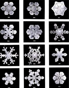 "These images are part of a long term project undertaken by the American photographer Wilson Bentley, who perfected a process of catching snowflakes on black velvet, and shooting them before they melted away or sublimated. Photographing his first snowflake in 1885, Bentley would go on to capture more than five thousand pictures a project that was both a representation of the passion he had for the ""tiny miracles of beauty"", and also an effort to discover if any two snowflakes are ever the…"