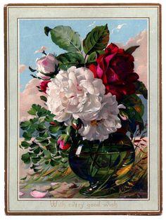 Stock-Images-Flowers-Vase-GraphicsFairy.jpg (1206×1600)