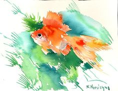 Goldfish Watercolour