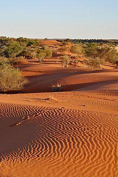 Namibie - Au coucher du soleil