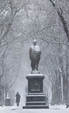 A statue of Alexander Hamilton along Commonwealth Avenue Mall on February 8, 2013 in Boston, Massachusetts.
