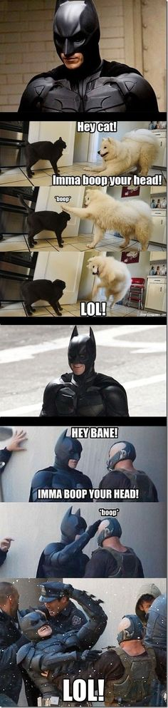 Where Batman learned his fighting moves from #funny