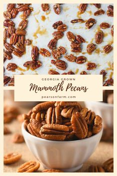 "Known as a ""Mammoth"" pecan because its size; the kernel is usually oily and flavorful. Known as a ""Mammoth"" pecan because its size; the kernel is usually oily and flavorful. Pecan Recipes, Fall Recipes, Georgia Pecans, Healthy Eats, Peach, Nutrition, Snacks, Farm Life, Breakfast"