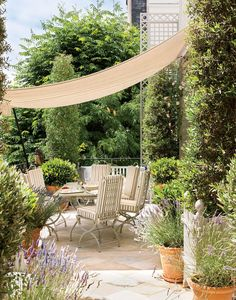 In Her Element - The terrace, brimming with purple salvia, bay, jasmine, and roses, was designed by landscape architect Madison Cox.