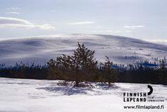 Kukastunturi fell, Finnish Lapland. Photo by Sauli Koski/ Ylläs Tourist Information. #filmlapland #arcticshooting #finlandlapland