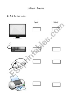 What are Computer Input Devices and Describe the various