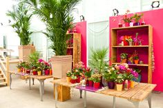 We used a base of wooden materials. This strengthens the sense of Bohemian. All the bright colors make it complete!