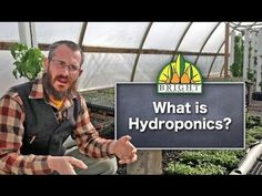 What is Hydroponics? A Brief Introduction - YouTube