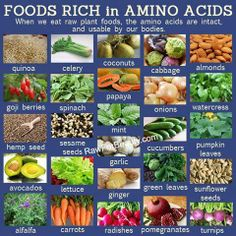 RawganicVegan - Foods rich in Amino Acids: Amino acids are the building blocks of protein. Eat a wide variety of fruits, vegetables, nuts and seeds and you have a perfect diet