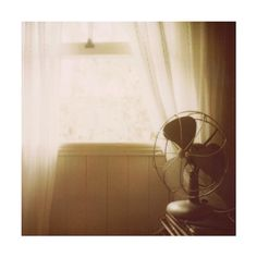 Vintage Fan by Ash: Polaroid Print