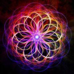 COLORFUL PETUNIA Zentangle, Tesselations, Fractal Art, Fractal Images, Meditation Crystals, Sacred Geometry, Geometry Art, Luminous Colours, Spirited Art