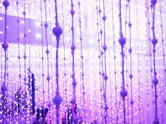 11 | Wander Through A Wilderness Of Color, Made With 8,000 Interactive Lights | Co.Design: business + innovation + design