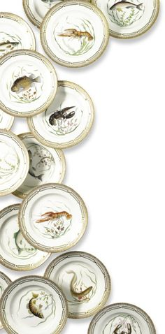 A set of twelve Royal Copenhagen fish dinner plates Flora Danica, Fish Plate, Fish Dinner, Royal Copenhagen, China Patterns, Elegant Homes, Art Auction, Dinner Plates, Floral Design