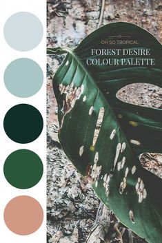 Forest Desire Palette - Oh So Tropical.tropical home decor, tropical decor Tropical Bedrooms, Tropical Home Decor, Tropical Colors, Tropical Houses, Tropical Interior, Tropical Forest, Tropical Furniture, Tropical Master Bedroom, Tropical Bathroom Decor