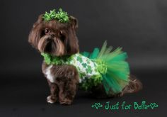 St Patricks Day Shamrock Dog Dress Tutu by JustForBella on Etsy