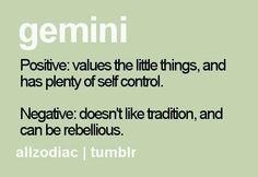 cute sexy gemini zodiac women ladies t shirt Gemini Quotes, Zodiac Signs Gemini, Zodiac Quotes, Zodiac Facts, Gemini Traits, Gemini Life, Gemini Woman, Gemini And Cancer, Taurus And Gemini