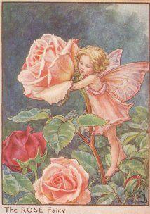 Antique Rose Flower Fairy print
