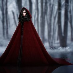 """A select snippet of my current book:  """"So, we continue the tradition. The constant raging of war against the Marcellines', the fairytale Nazis. There is nothing we can do. When my mother got old, and the Marcellines' magic surrounded her, she gave me the cloak, and told me to never give up what I believe in. Red is not always the color of blood. You would be well to remember that, Juliet."""""""