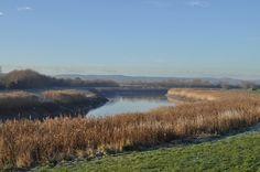 Spicerack HQ - River Parrett, Quantock Hills in distance.