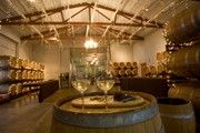 Knapp Winery & Restaurant 1.800.869.9271  winery@knappwine.com  2770 County Road 128, Romulus, NY, 14541 - Cayuga Lake, Finger Lakes
