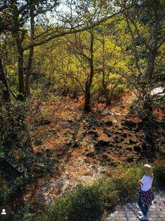 Wander, Exploring, Autumn, Island, Mountains, Landscape, Amazing, Nature, Travel