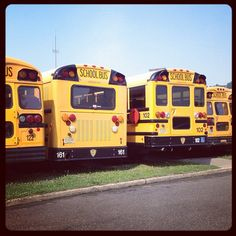 Most school buses have been painted National School Bus Chrome Yellow since a 1939 national conference recommended the shade. #school