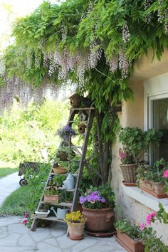 A cottage garden can incorporate quirky or funny ideas, like painted signs, that would not go with a more formal garden concept. The cottage garden projects Rustic Gardens, Outdoor Gardens, Rustic Garden Decor, Garden Decorations, Style Cottage, Bird Bath Garden, Garden Art, Garden Beds, The Secret Garden