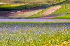 Steve McCurry - Sensational Umbria | www.regioneumbria.eu