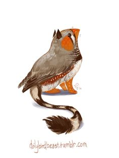 """dailybirdbeast: """" Aaaand I'm back! Kicking off the week with a little zebra finch griffin, in honor of my research species and my school's very very new mascot. I knew I would be busy but I still..."""