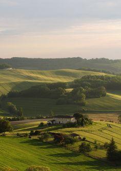 Landscape near Castelnau-de-Montmiral, Midi-Pyrénées Heaven On Earth, Vineyard, Outdoor, Beautiful, Foods, Beautiful Places, Outdoors, Food Food, Food Items