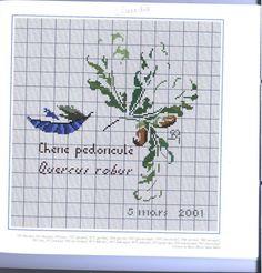 Gallery.ru / Фото #10 - Agenda 2002 - Mongia