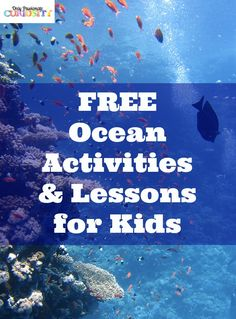Free Ocean Activities for Kids: Free Ocean Games for Kids Paper Plate Crab Craft Ocean Online Jigsaw Puzzles Clam Shell Masterpieces Oceans of the World Activity Understanding Oceans Rainbow Fish (the book) Activity Aquatic Animal Creatures: Scholastic Explorers Ocean Life Program/Activities NOAA Differential Heating Activity Ocean Portal: Find Your Blue  NASA Warming Oceans Activities How to Hide in the Ocean Dolphin Paper Mache Craft  Fingerprint Whale Art