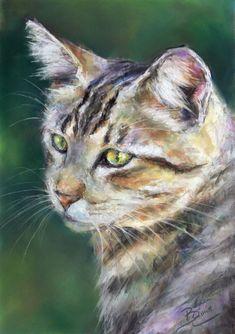 ORIGINAL A4 Pastel Drawing/Painting of a Cat - by Animal Artist Belinda Elliott #Realism