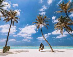 ~Palm trees & swaying in the breeze~ 📷 Maldives Luxury Resorts, Visit Maldives, Paradise On Earth, Luxury Holidays, Palm Trees, Breeze, Exploring, Wanderlust, Journey
