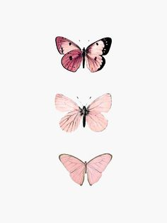 Butterfly Discover Pink Butterflies Sticker by haleyerin Millions of unique designs by independent artists. Find your thing. Cute Patterns Wallpaper, Aesthetic Pastel Wallpaper, Aesthetic Wallpapers, Aesthetic Pastel Pink, Aesthetic Yellow, Aesthetic Dark, Aesthetic Anime, Aesthetic Pictures, Butterfly Wallpaper Iphone