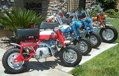 A bunch of nice Honda minitrails Honda Cycles, Honda Bikes, Honda Motorcycles, Cars And Motorcycles, Four Stroke Engine, Minibike, Honda Cub, Japanese Motorcycle, Cafe Racer Motorcycle