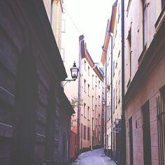 bengtssonsofia @ instagram. #gamlastan #stockholm #swedish #sverige #city #beautiful #architecture #lantern #green #tree #leaves #lantern #sunlight #shadows #instagram #statigram