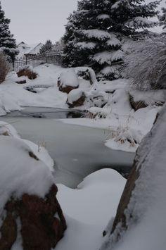 Waterfeature, Winter Landscape, Gardening, Landscape, Landscape Design by Alpine Gardens
