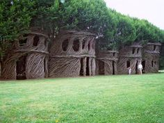 Behold These Incredible Works Of Architecture Made Out Of Living Trees  ... this is at New Harmony Gallery, New Harmony, Indiana