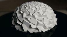 Des sculptures de Fibonacci en zootrope