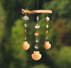Mobile Wind chime made of shells for the garden decoration / wind chime made of shells Seashell Wind Chimes, Diy Wind Chimes, Seashell Art, Seashell Crafts, Beach Crafts, Seashell Projects, Garden Crafts, Diy Garden Decor, Carillons Diy