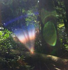 Nature Is Speaking, New Age Books, Visit Sedona, Orb Light, Spiritual Manifestation, Nature Spirits, Divine Light, Natural Energy, Lens Flare