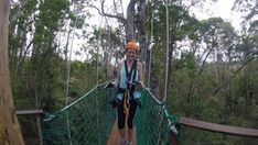 Tsitsikamma Canopy Tour - Linda Armstrong Unzipping Adventure Forest Floor, Canopy, Lush, Photo Galleries, Tours, Adventure, Canopies, Fairytail, Adventure Nursery