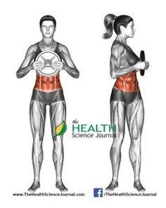 © Sasham | Dreamstime.com - Exercising for Fitness. Oblique Twist with Weight Plate. Femal